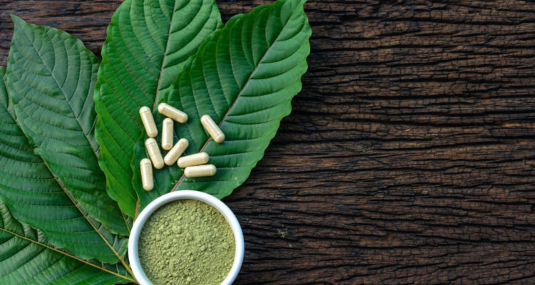 Tips On How To Successfully Create Your Purchase Kratom Earnings
